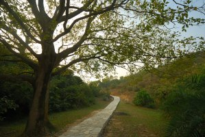 Photo taken at Yuen Tsuen Ancient Trail, Ting Kau, Hong Kong with NIKON D80