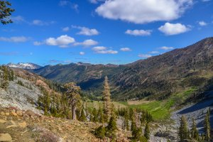 Shasta-Trinity National Forest, 1750 Trinity Alps Road, Trinity Center, CA 96091, USA