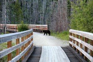 Kettle Valley Rail Trail, Naramata, BC V0H 1N0, Canada
