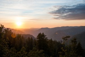 Wawona Road, YOSEMITE NATIONAL PARK, CA 95389, USA