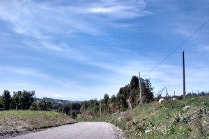 W-195, Dalcahue, X Región, Chile