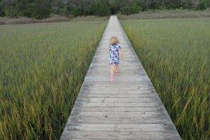 Osprey Point, Charleston, SC 29412, USA