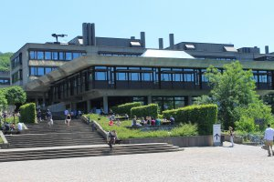 University of Zurich, Winterthurerstrasse 170, 8057 Zürich, Switzerland