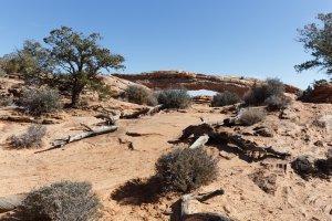 Mesa Arch Trail, Moab, UT 84532, USA