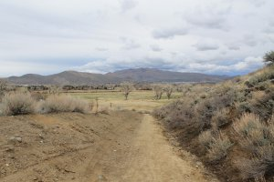 Humboldt-Toiyabe National Forest, 2067 Canterbury Lane, Carson City, NV 89703, USA