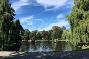 The Lagoon, Public Garden Path, Chinatown, Beacon Hill, Boston, Suffolk County, Massachusetts, 02116, USA