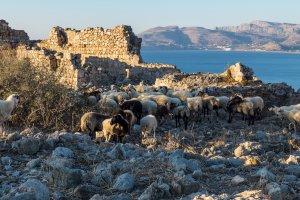 Unnamed Road, Rodos 851 02, Greece