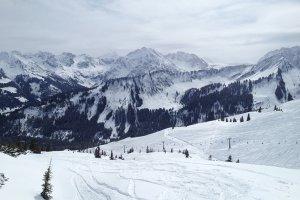 Auenalpe 2339/1, 6992 Hirschegg, Austria