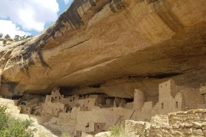 Cliff Palace, Cliff Palace Trail, Montezuma County, Colorado, 81330, United States