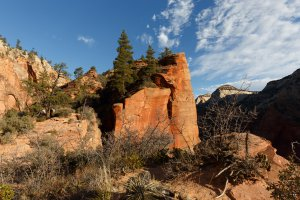 Photo taken at Zion National Park, Angels Landing Trail, Hurricane, UT 84737, USA with Canon EOS 5D Mark III