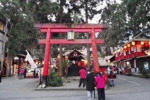 558, Taiwan, Nantou County, Lugu Township, 森林巷10-2號溪頭自然教育園區