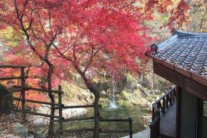 238-1 Ui-dong, Gangbuk-gu, Seoul, South Korea