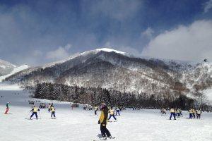 12860 Chikuniotsu, Otari-mura, Kitaazumi-gun, Nagano-ken 399-9422, Japan