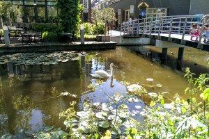 Achterom, 2722 Zoetermeer, Netherlands