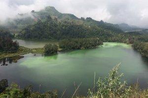 Jalan Raya Dieng, Kejajar, Kabupaten Wonosobo, Jawa Tengah 56354, Indonesia