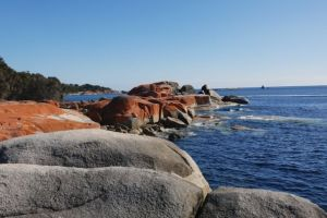 Jeanneret Beach, Gardens Road, Akaroa, Binalong Bay, Tasmania, Australia