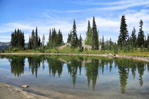 Photo taken at Pacific Crest Trail, Naches, WA 98937, USA with Canon EOS 6D