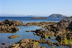 ZEPA Illa de Ons, Galician Atlantic Islands Maritime-Terrestrial National Park, 36939 Bueu, Pontevedra, Spain