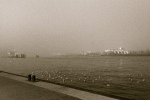 Brücke 3, 20359 Hamburg, Germany