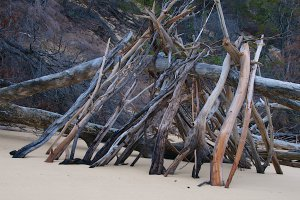 Great Sandy National Park, LOT 7 Esplanade, Fraser Island QLD 4581, Australia