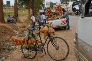 Kabale - Mbarara Road, Mbarara, Uganda