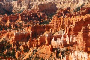 Photo taken at Bryce Canyon National Park, Queens Garden Trail, Bryce, UT 84764, USA with SONY SLT-A77V