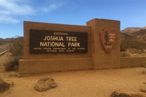 Photo taken at Joshua Tree National Park, Park Boulevard, Twentynine Palms, CA 92277, USA with Apple iPhone 6