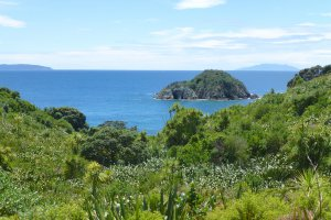 Ridge Road, Army Bay, Whangaparaoa, New Zealand