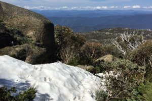 Photo taken at Mount Buffalo Rd, Mount Buffalo VIC 3740, Australia with Apple iPhone 6