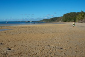 Great Sandy National Park, Unnamed Road, Fraser Island QLD 4581, Australia