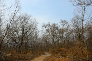 Huan Shan Lu, Dengfeng Shi, Zhengzhou Shi, Henan Sheng, China, 452470